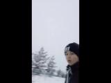 Яна Шпынева - Live