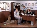 Vozvraschenie Muhtara 2 7 sezon 84 seriya iz 96 2011 XviD SATRip