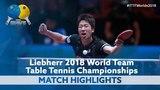 2018 World Team Championships Highlights Jun Mizutani vs Ho Kwan Kit (R16)