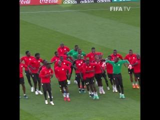 Сборная Сенегала в отличном настроении перед матчем с Японией