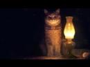 Кот гипнотизёр с лампой