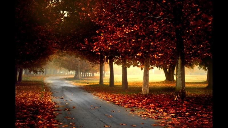 ے Дорогα в Осень ے  Рαймонд Пαулс