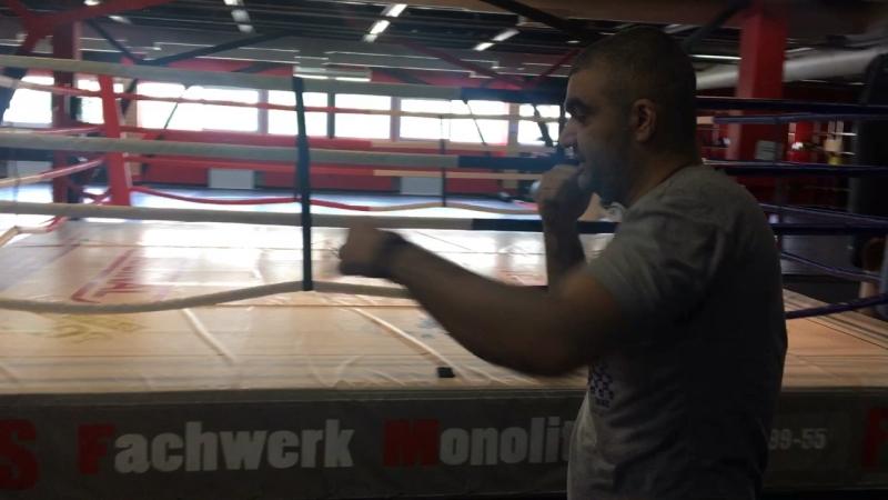 Бокс Маир