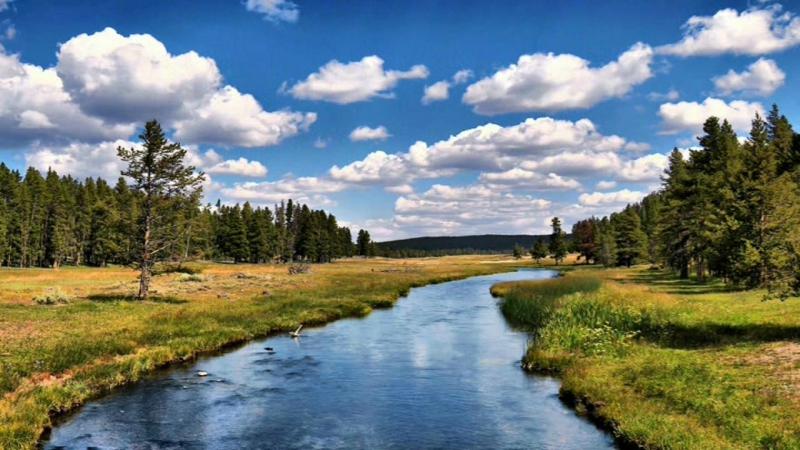 Бежит река Исполняет Елена Саларёва - Грин