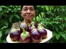 Village Foods ❤ Village Style Eggplant Recipe by my Mom