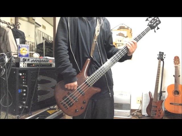 Korn Got the life / bass cover
