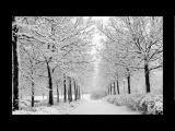 Vivaldi - Winter (RV 297) - Itzhak Perlman