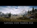 Skyrim SE Mods Natural View Tamriel NVT ENB