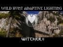 WILD HUNT ADAPTIVE RESHADE Witcher 3 Ultra ENB Mods Photoreal Reshade Nvidia GTX 1080