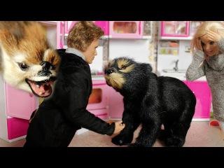 ЗВЕРИ СБЕЖАЛИ ИЗ ЗООПАРКА. Схватка с медведем. Мама Барби, Маша и медведь
