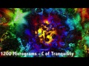High Energetic Core [ Emotional Uplifting Morning Trance / Psytrance ( Goa ) / Full On ]