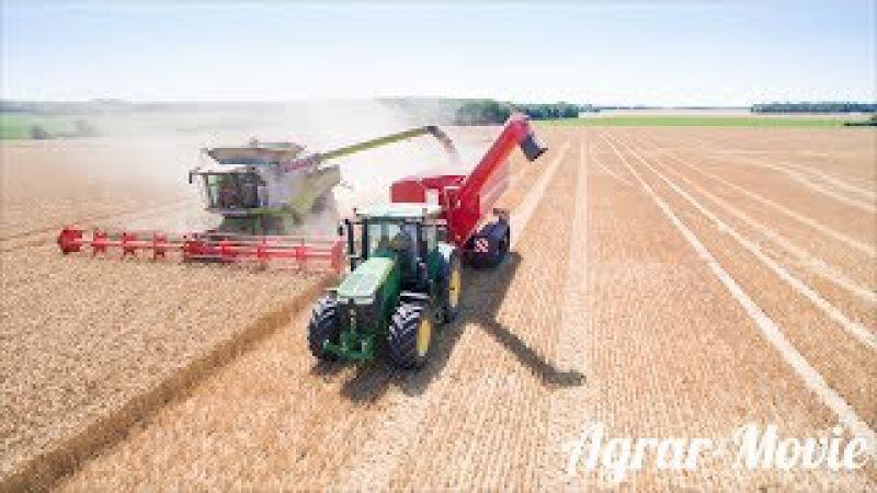 Harvest wheat Claas Lexion 780tt Claas Vario 1230 John Deere 7230r Horsch Titan 34uw