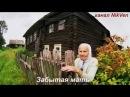 Дима Пестов Забытая мать песня под гармонь