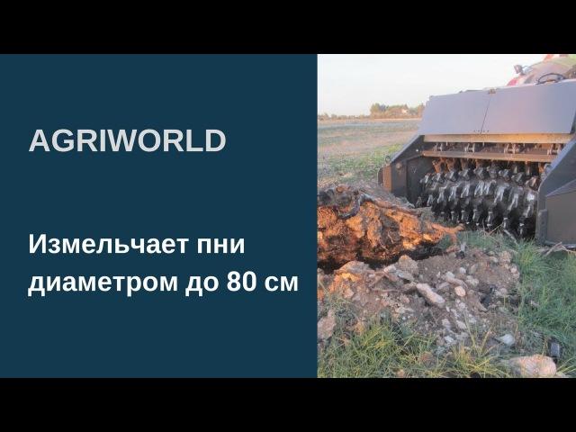 Почвенная фреза AgriWorld. Измельчает пни диаметром до 80 см. Измельчитель пней показ ...
