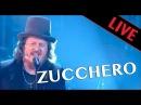 Zucchero - BAILA MORENA ALLA FINE - Live dans Les Années Bonheur