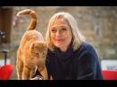 Видео к фильму «Уличный кот по кличке Боб» (2016): Трейлер