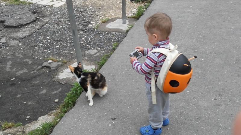 Светослав фотографирует котиков новоафонских.
