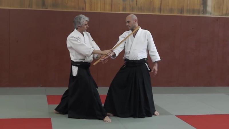 Aikido- Bruno Gonzalez Pascal Guillemin Vincennes 2013