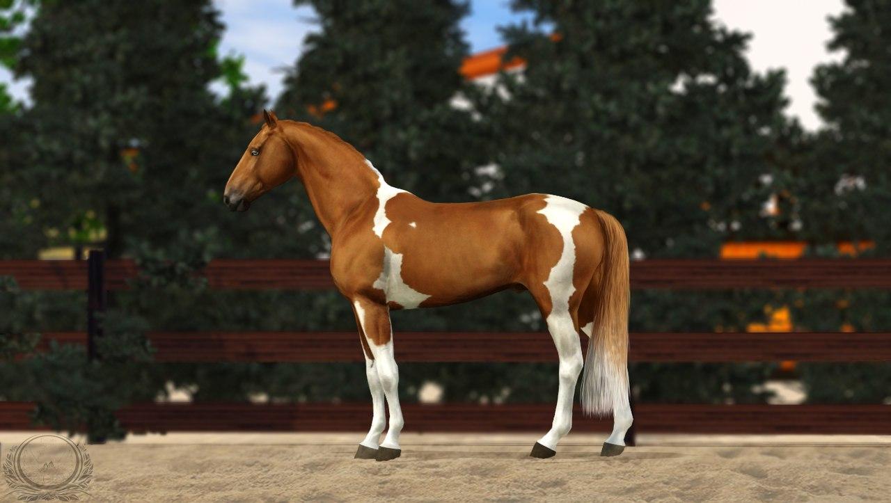 Регистрация лошадей в RHF 2 - Страница 8 EkQGWMOihxA