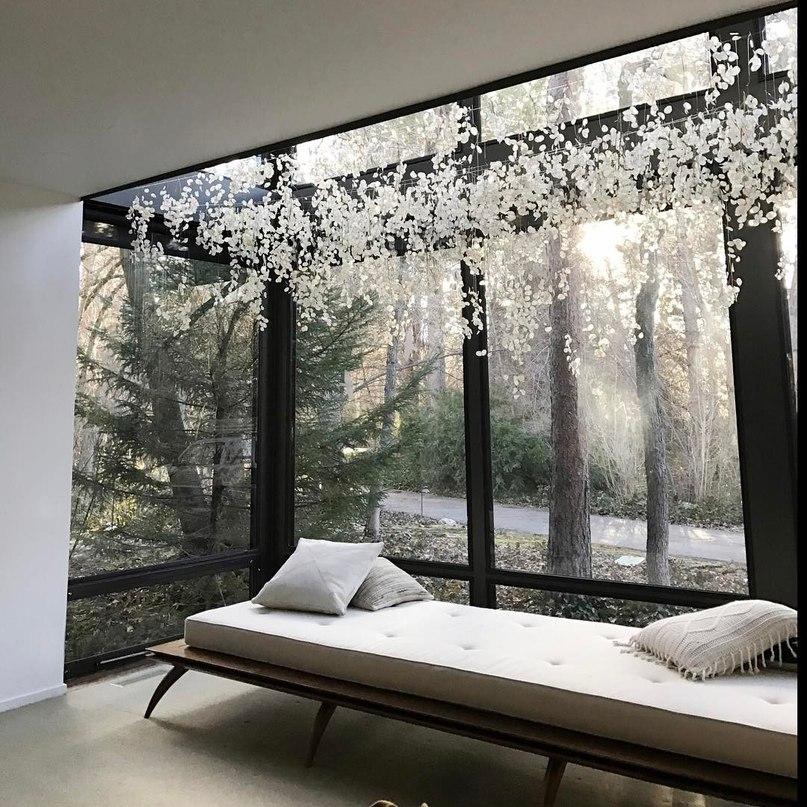 Инсталляция Сары, созданная с использованием одной лишь лунарии