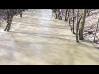 Половодье на реке Сходня. Москва, район Южное Тушино. 11 апреля 2018 года.