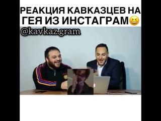 Кавказцы о Геях [ОдноКавказцы]