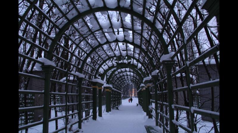 Зимняя прогулка по Летнему саду