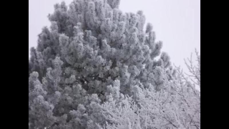 ~ Снег во дворе Автор и исполнитель Иван Смушко ~