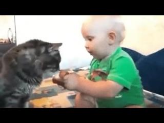 поделился с любимым котиком