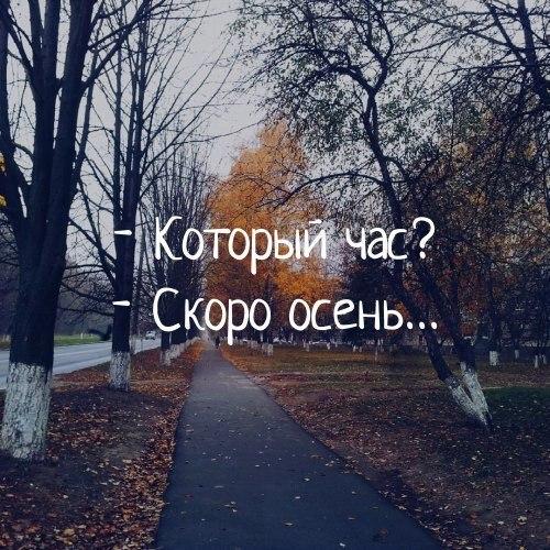 https://pp.userapi.com/c840438/v840438559/955/97cyRbdD0_s.jpg