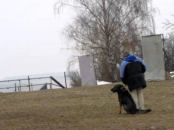 Melnik, march 2010 - Bady ze Svobodneho dvora training