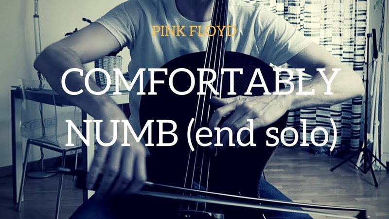 Pink Floyd - Comfortably Numb (end solo) for cello (COVER)