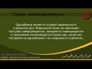 шейх АбдурРаззак аль-Бадр - Таухид основа принятия дел