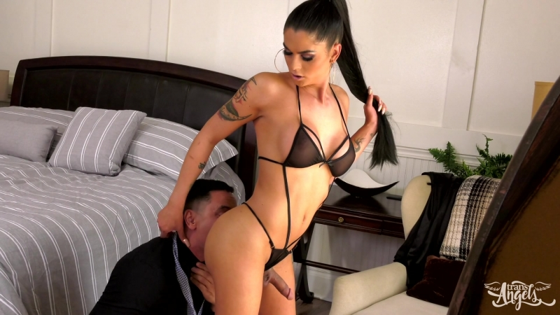 Trans Angels Domino Presley Gabriel DAlessandro Putting the D in Dinner 2018, shemale, hardcore, bareback,