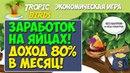 ИГРА TROPIC-BIRDS - ЗАРАБОТОК НИЧЕГО НЕ ДЕЛАЯ! ДОХОД 80% В МЕСЯЦ