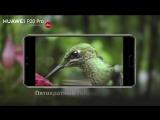 Huawei P20 Pro. 5-кратный гибридный зум