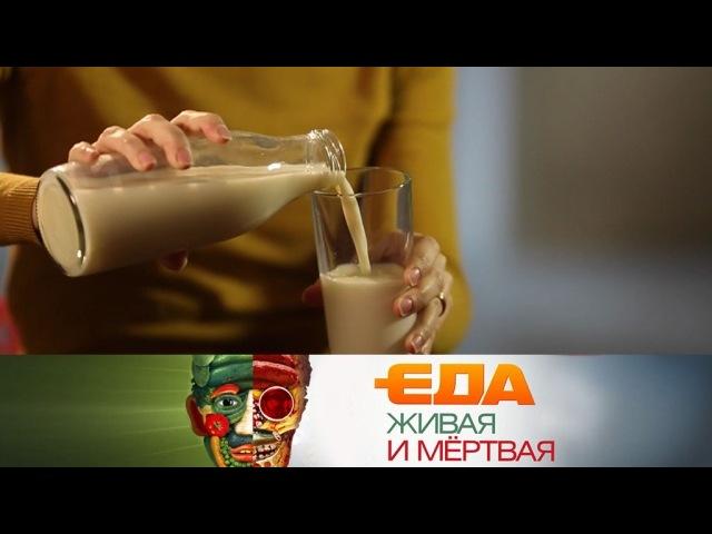 Все секреты молока, квашеные ананасы и 5 самых необычных рецептов из разных уголков России