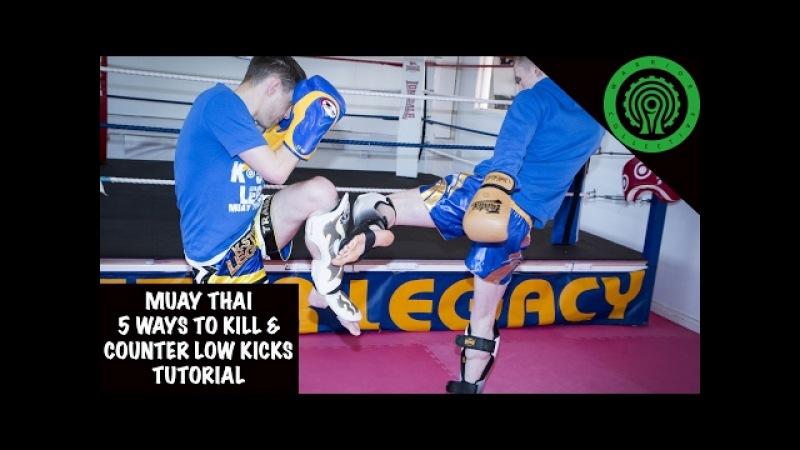 Muay Thai 5 Ways to Kill and Counter Low Kicks Tutorial