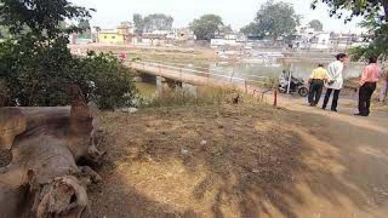3 Деревня в Индии: 250 Км от Индор с Доктор Перч