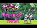 The Battle Cats Marauder Cat Переведен в Тру Форму и Теперь Он Paladin Cat в Батл Кэтс