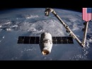 SpaceX plans to launch internet satellites in 2019 to provide internet access worldwide - TomoNews