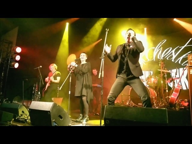 Дунаевский Orchestra - Давай-давай live @ Cover Party 08.01.2016
