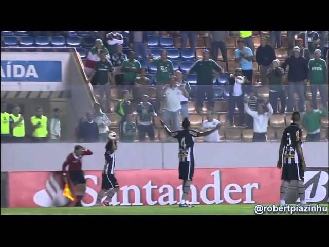Torcedor joga bola no bandeirinha Altemir Hausmann Palmeiras x Botafogo (HD)