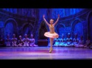 Детский балет Щелкунчик. Вариация Драже