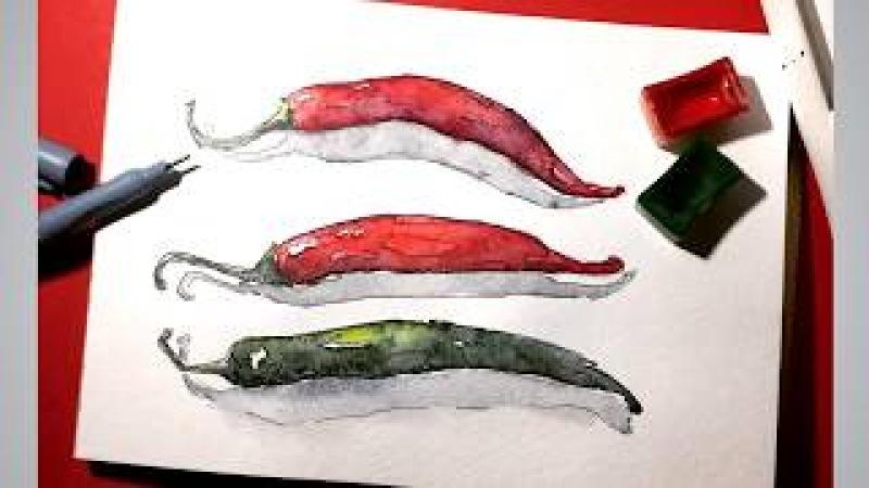 Скетчинг для начинающих. Рисунки акварелью в сектчбуке: Как нарисовать перец