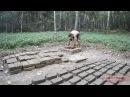 Primitive Technology Mud Bricks