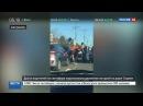 Новости на «Россия 24» • Сезон • Драка на дороге в Сиднее парализовала движение