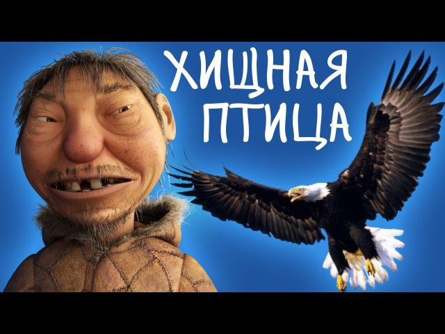 Анекдот 4 Хищная птица