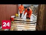 Режим чрезвычайной ситуации введен в Новгородской области из-за паводка - Россия 24