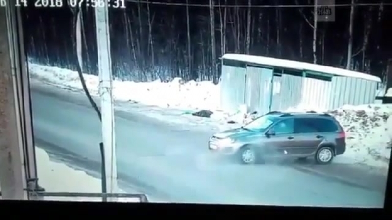 Настоящий мужчина 👍🏼 Неровнодушный водитель отбил девочку у стаи агрессивных собак Школьница была в панике!момент сняла камера